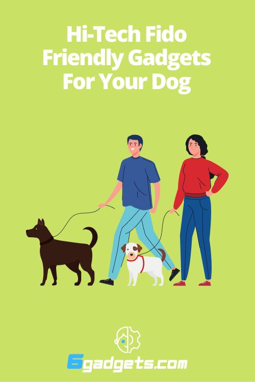 dog gadgets