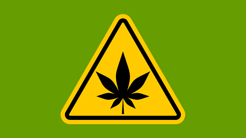 21 Weed Gadgets & Accessories For Beginners To Cannabis Connoisseurs